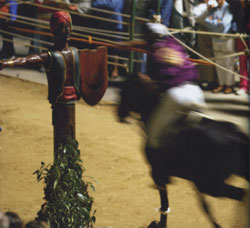The Joust of the Saracen in Sarteano